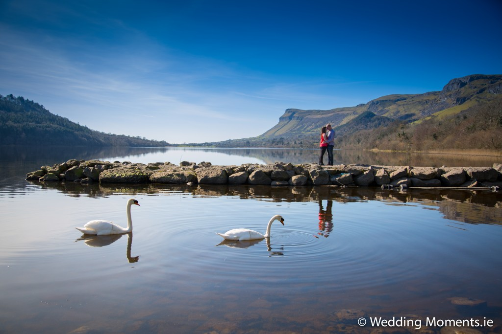 Couple with beautiful swans before their wedding