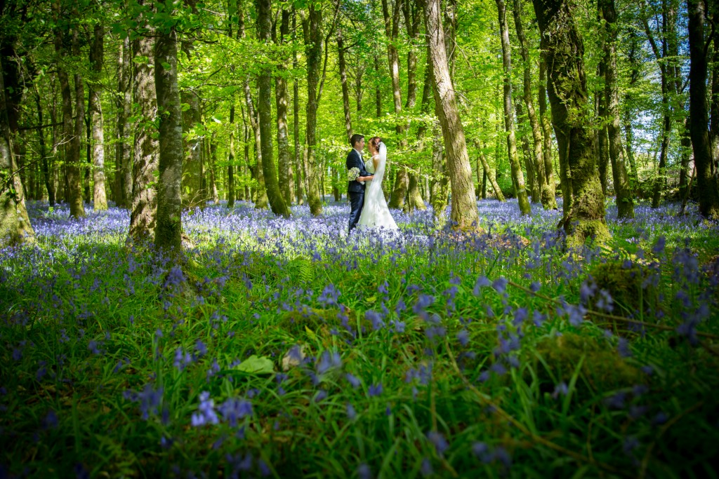 Wedding video Castle Dargan Sligo